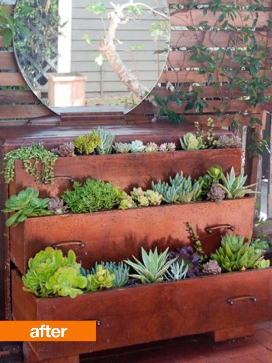 An old dresser left behind becomes a garden of succulents by drilling a few drainage holes in the drawers to create a sturdy vessel for a garden of succulents.