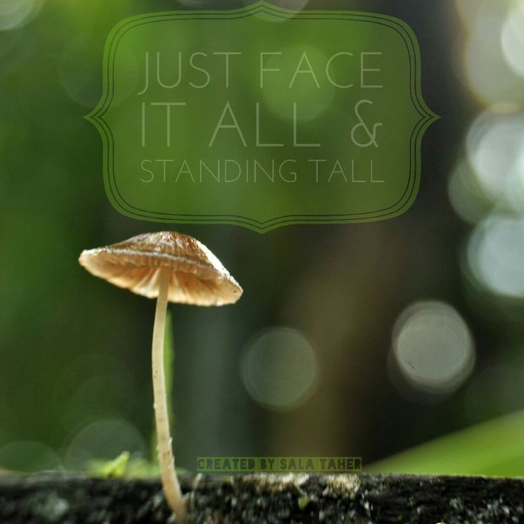 Just face it all & standing tall...