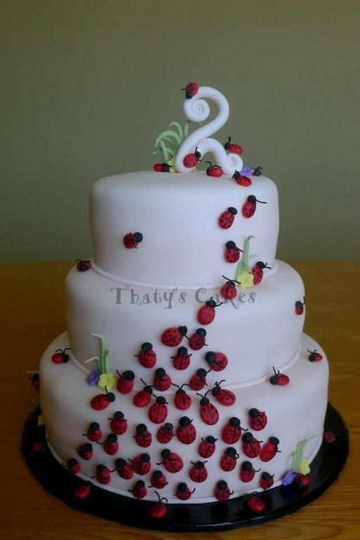 Cute ladybug cake!  This is adorable ... not sure if I can convince the gr-daughter that it's okay to have bugs on her cake!  LOL