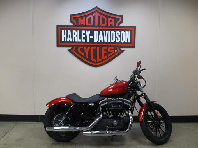 Harley Davidson Iron 883 Bike