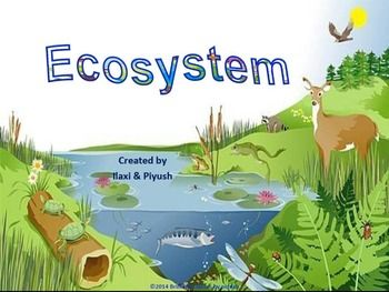 This unit consists of following topics and each topic is explained with picture/diagram for easy understanding. 1. What is an ecosystem? 2. Populations and communities 3. Habitat and Niche 4. Diversity 5. Main ecosystems such as:  Desert, Rainforest, Ocean, Taiga, Aquatic ecosystem (marine and fresh water ecosystem, lake ecosystem and pond ecosystem.) Tundra, Chaparral, Grassland, Temperate Forest. 6. Abiotic and biotic factors 7. Species interactions 8. Biotic components of ecosystem: