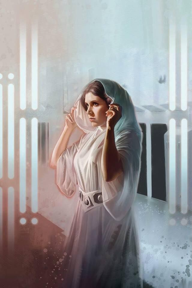 Pin By Wendy Johnson On Star Wars Leia Star Wars Star Wars Princess Star Wars Art