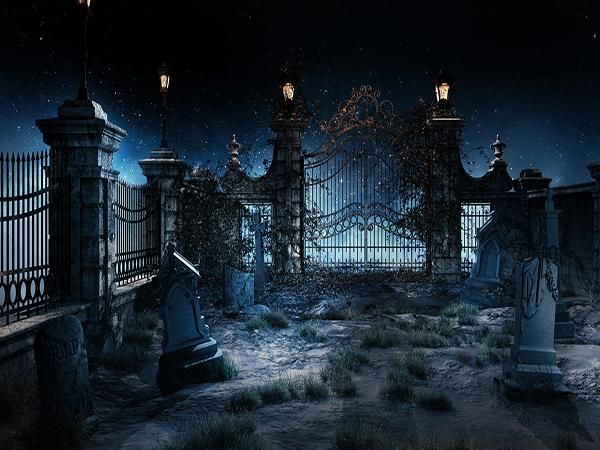 Best 25 Halloween Photography Backdrop Ideas On Pinterest