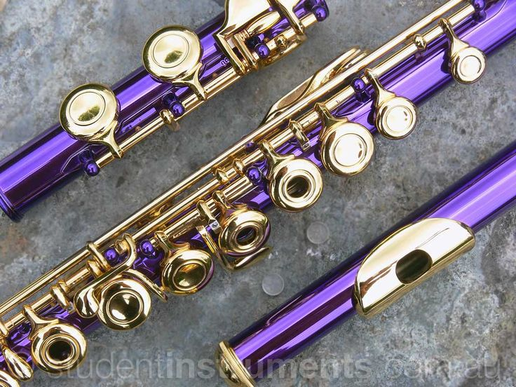 Purple and gold flute!!! How awesome is that?!! why couldn't they have had this when I was in band.
