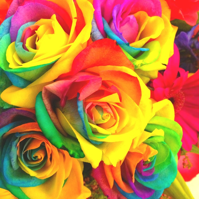 Tie dye roses from holland jess pinterest for How to make tie dye roses