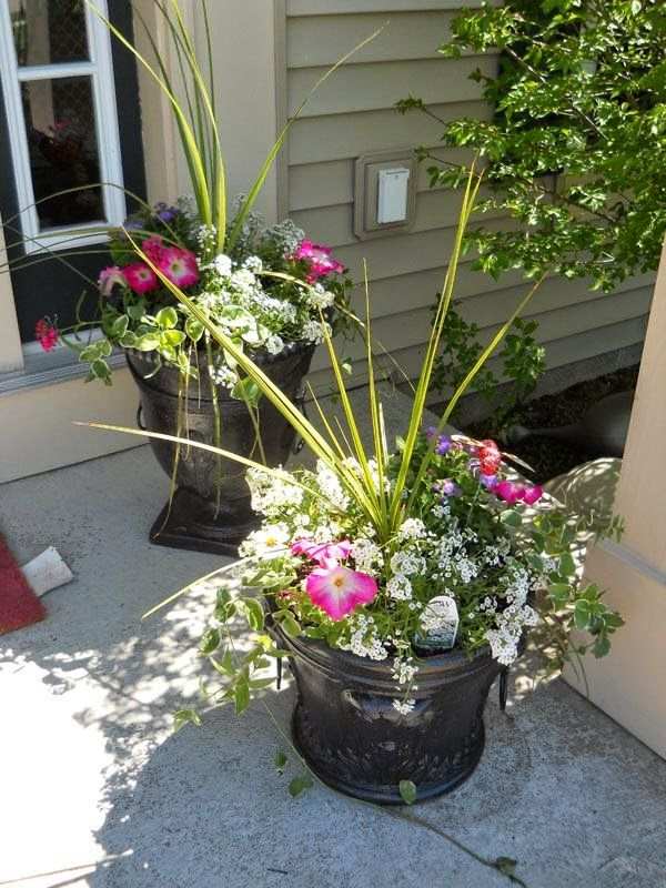 Outdoor flower pot arrangement garden pinterest for Landscape arrangement