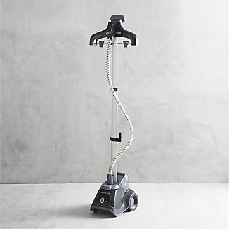 Rowenta® Compact Valet Steamer I Crate and Barrel