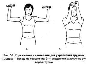Упражнения с гантелями для укрепления мышц рук и груди