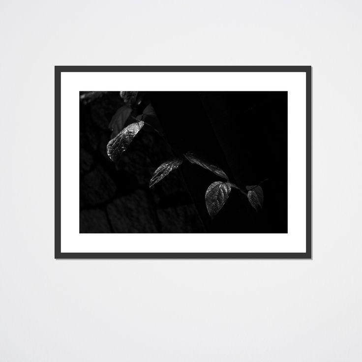 Abstracto II | Foto impresa en papel fotográfico + marco. Desde $590