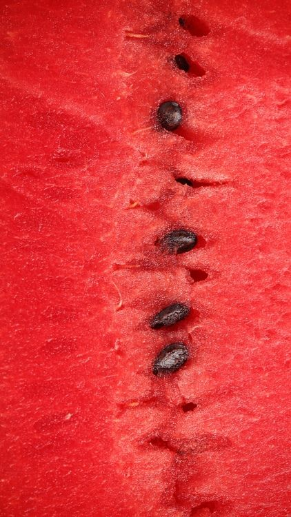 Red | Rosso | Rouge | Rojo | Rød | 赤 | Vermelho | Color | Colour | Texture | Form | Pattern | Watermelon red
