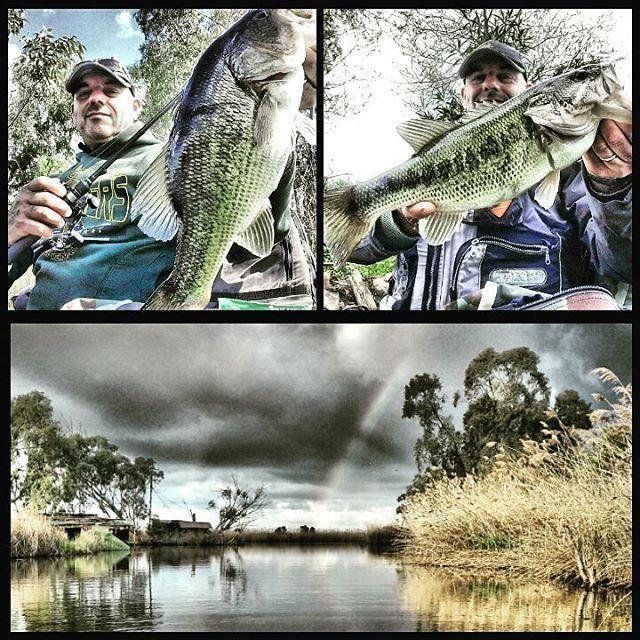 #pesca #spinning #bassfishing #fish #bass #blackbass #fishing #cattura #catch&release #catch #yamamoto #daiwa #majorcraft #relax #lovefishong #lake #pike #nonmirompetelepalle #artist #foto #photo #persico #trout #massaciuccoli http://www.butimag.com/Yamamoto/post/1479205630815247728_395341237/?code=BSHMa8egB1w