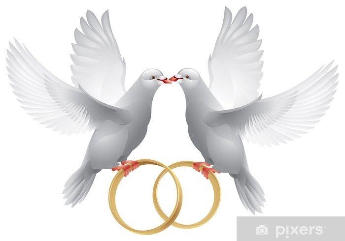 Fototapeta Slubne Biale Golebie Z Pierscieniami Pixers Zyjemy By Zmieniac Tauben Hochzeit Karte Hochzeit Weisse Taube