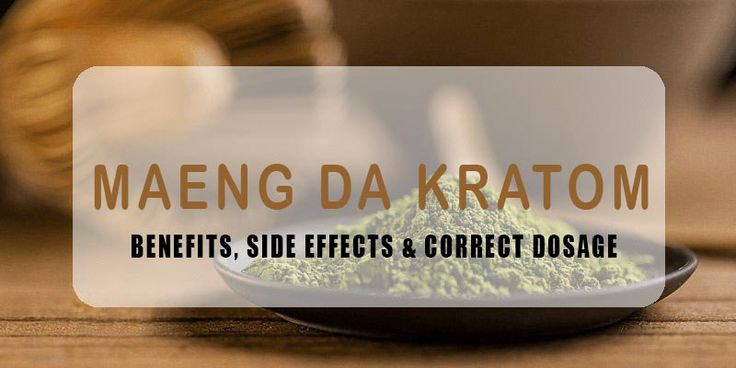 Everything you need to know about the effects, side effects and right dosage of Maeng Da Kratom, which is said to be the strongest form of Kratom...