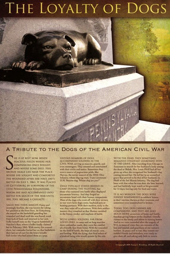 Gettysburg Civil War Dog Poster   'Sallie' Statue by LoyaltyOfDogs, $7.49. That's our girl!