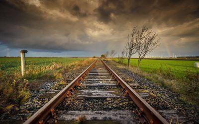 Scarica sfondi ferrovia, giornata uggiosa, campo, alberi