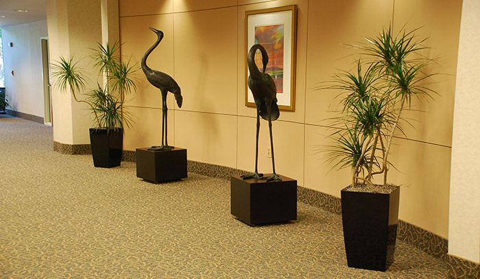 30 best office greenery images on pinterest indoor house plants greenery and indoor plants - Enhancing work efficiency home indoor plants ...