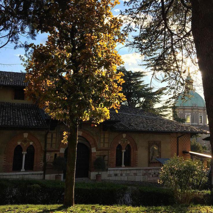 Лютая зима в Лонато #lonato #lombardia #lonatodelgarda #italia #italianwinter #открыткиизлонато #зимавиталии by petacinca