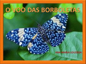 http://pt.slideshare.net/AnaMariaLouzada/o-voo-das-borboletas