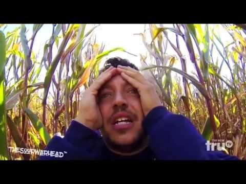 Impractical Jokers - Sal's Haunted Corn Maze - YouTube