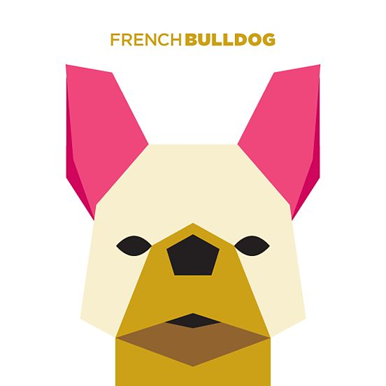50 Animals Illustrations Drew with Simple Shapes | The Design Inspiration