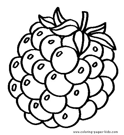 grapes color page fruit color page fruits coloring pages color plate coloring sheet