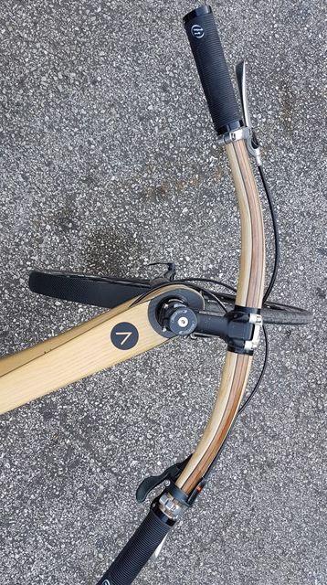Animus bike