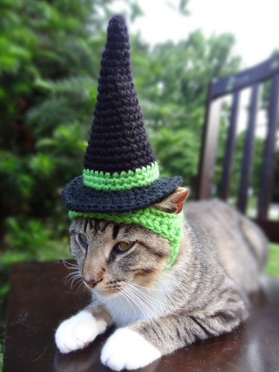 Witch Cat Dog Costume Witch Hat for Cats and by iheartneedlework