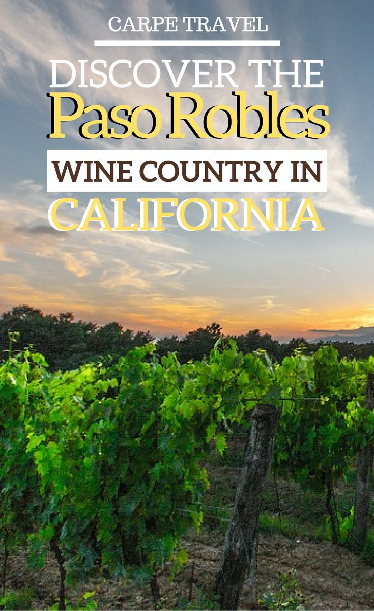 Wine lovers cannot miss a visit to Paso Robles, the new hot destination for wine travel in California. Read on for why you should visit Hope Family wines vineyards + an interview with Austin hopes, the winemaker. | Paso Robles ca | Paso Robles wineries #PasoRobles #Pasowine #PasoRobleswine - via #elainschoch