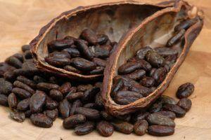 Какао бобы. Сырой шоколад - Блог Кухня Шамана