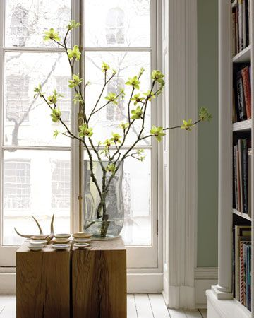 You best finds are made by good ol' mother nature.Decor, Ideas, Flower Arrangements, Orchid Arrangements, Bloom, Orchids Arrangements, Floral Arrangements, Green Flower, Branches