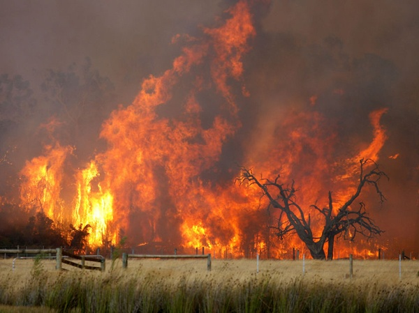 Bushfires are a constant threat in the #Australia Bush during spring/summer/autumn. This year's season started early
