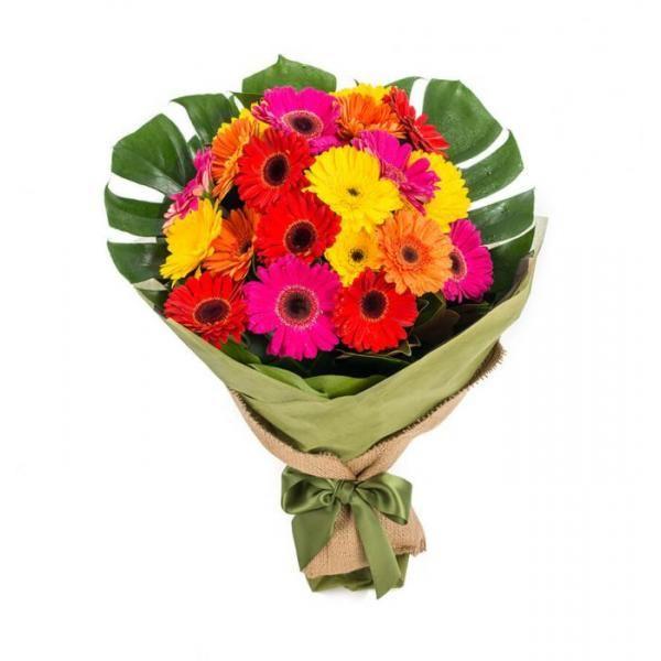 Gerberas Colour Burst 30 Stems Flowers Australia Flower Delivery Graduation Flowers