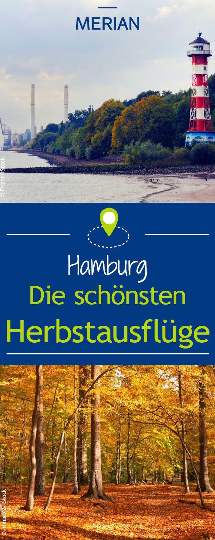 Auch zu Beginn der kalten Jahreszeit kann man in Hamburg  einiges unternehmen wie einen Spaziergang am Falkensteiner Ufer oder einen Besuch im Tierpark. Bei uns entdeckt ihr die besten Ausflugstipps für den Herbst in Hamburg!