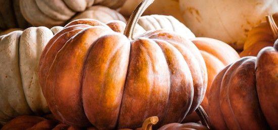 L'ortaggio più grande e colorato dell'autunno è ricchissimo di proprietà benefiche per la salute e la bellezza.
