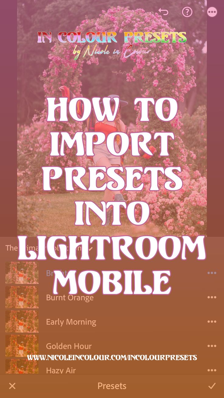 How To Import Presets into Lightroom Mobile Nicole in