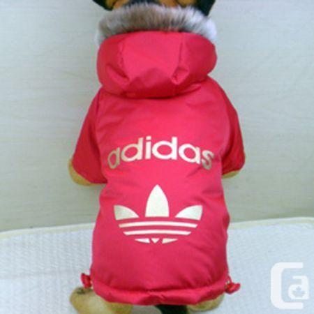 Nike Brand Dog Clothes