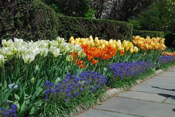 345 Best Images About Secret Garden On Pinterest Gardens