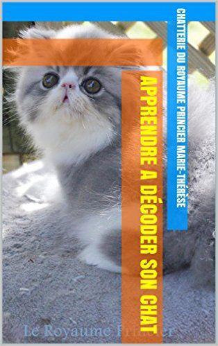 Comprendre les miaulements du chat qui miaule