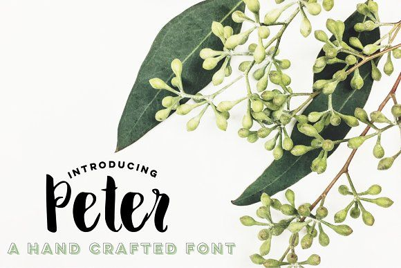 Peter by Rhonna Designs on @creativemarket