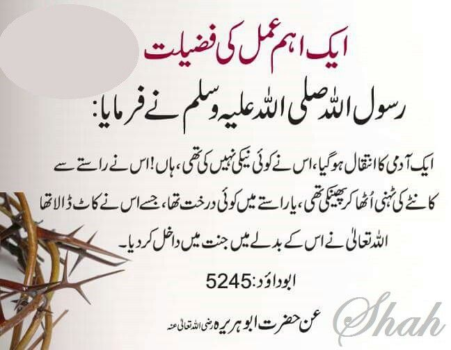 "#Importance of a #Smallest  #Good #Deed .#HADITH. Abu #Dawood - 5245 : "" A #Man #Died. He had't #done any #Deed of #Goodness. #YES ! He had #thrown out a #Branch of #Thorns from a #Way OR there was a #Tree in a #Way whicb he Cut out . Allah ( God ) ENTERED him in Paradise for its Reward "" . #ISLAM .#HADITH"