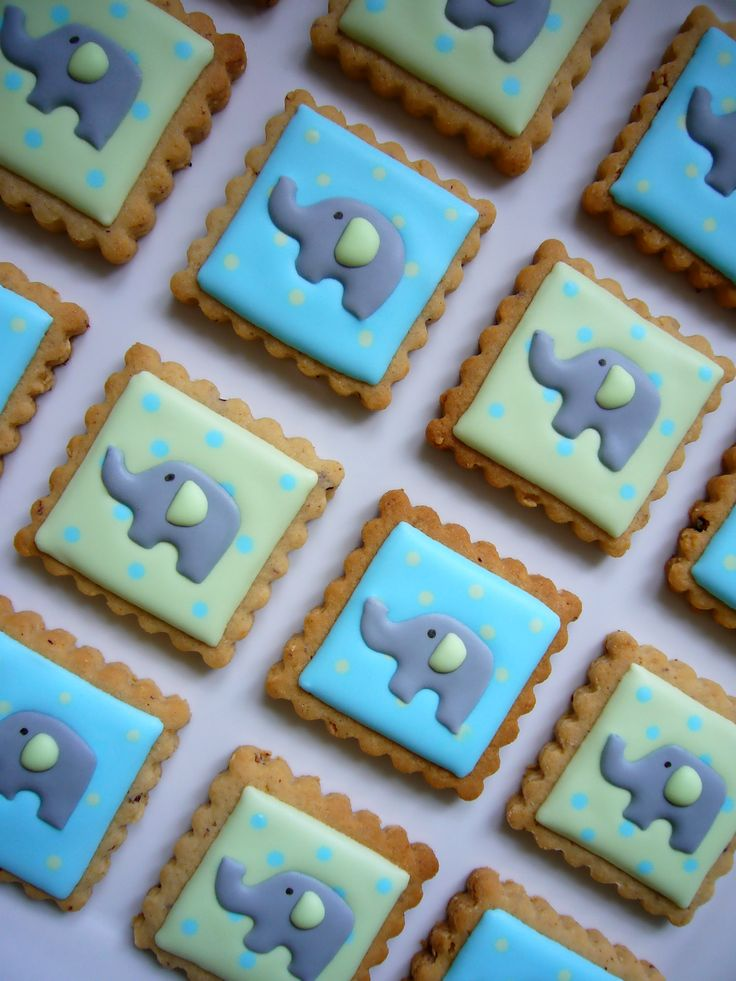 baby elephants cookies
