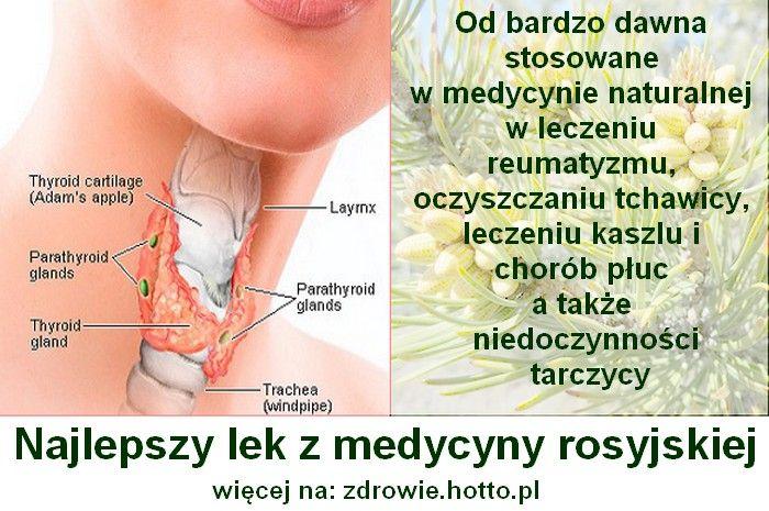 Od bardzo dawna jest stosowana w medycynie naturalnej w leczeniu reumatyzmu, oczyszczaniu tchawicy, leczeniu kaszlu i chorób płuc a także niedoczynności tar