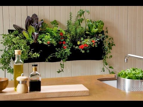 Indoor Gardens for Small Space