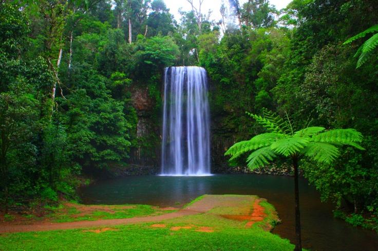 Millaa Millaa Falls, North Queensland, Australia