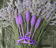 Everything-Lavender - DRIED LAVENDER FLOWERS - Information on Drying, Using and Buying