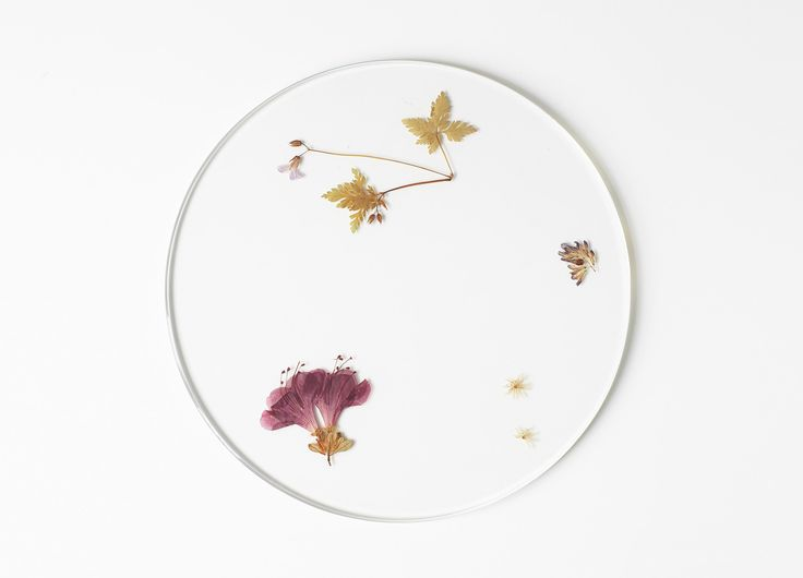 Evergreen Platters | Studio Meike Harde
