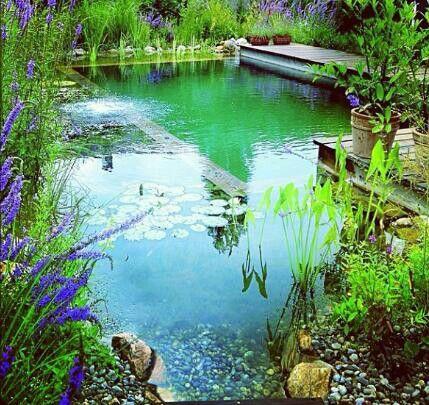 Natural Pool/Pond - Pinterest pic picks by RetoxMagazine.com
