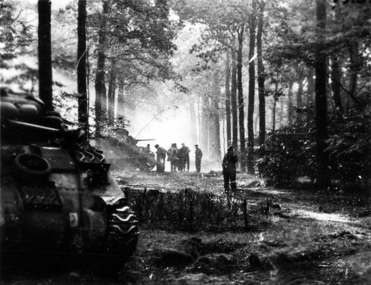 Men and Machines of Polish 1st Armoured Division in Forest - Holland 10.1944