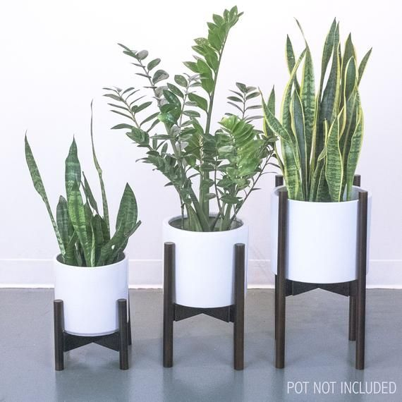 Mid Century Plant Stand Adjustable Width 9 To 12 Indoor Planter Stands Modern Design Natura Plant Stand Indoor Indoor Planters Planter Stand