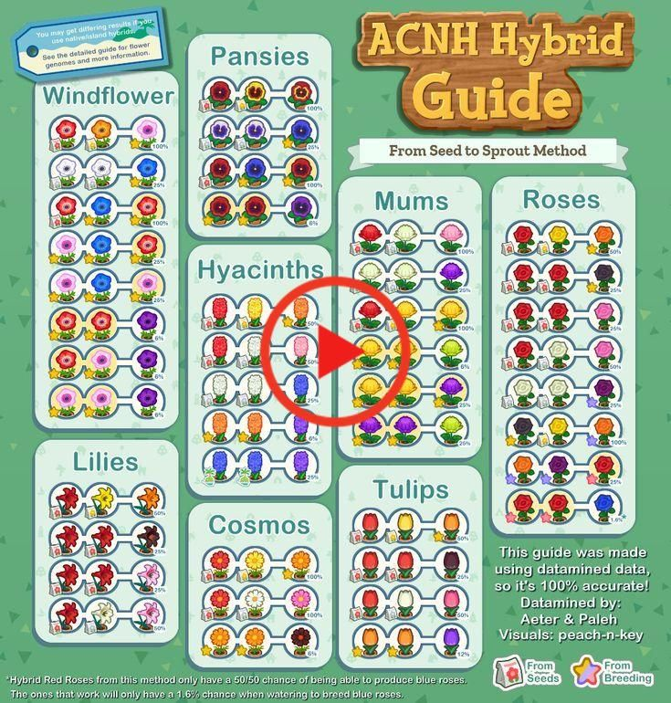 Acnh Hybrid Guide Complete Collection In 2020 Flower Guide Animal Crossing Pansies